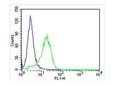 RAB3A (5B7) Monoclonal Antibody
