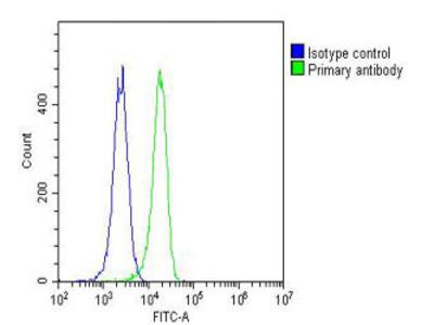 RAB27A (9C6) Monoclonal Antibody