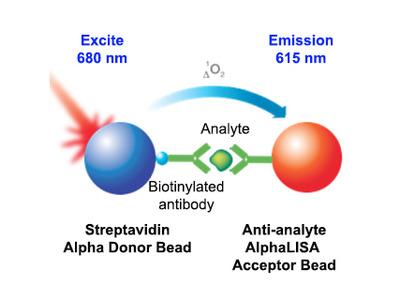 GLP-1 (7-36 amide) (human) AlphaLISA Detection Kit, 500 Assay Points