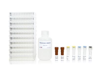 Human IL-1beta/TNF-alpha FluoroSpot kit