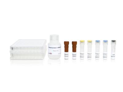 Human IL-1beta/IL-6 FluoroSpot kit