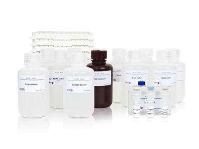 Human apoJ (Clusterin) ELISAPRO kit