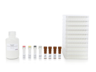 Human IFN-gamma/IL-10/IL-5 FluoroSpot kit, pre-coated