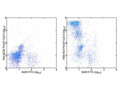 Ly-6G/Ly-6C Monoclonal Antibody (RB6-8C5), PerCP-Cyanine5.5, eBioscience™