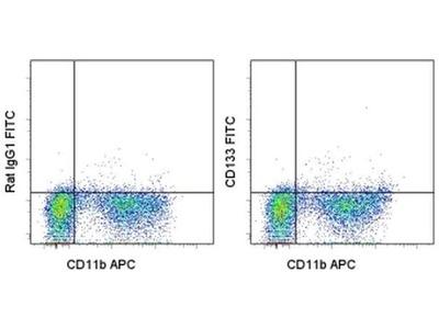CD133 (Prominin-1) Monoclonal Antibody (13A4), FITC, eBioscience™