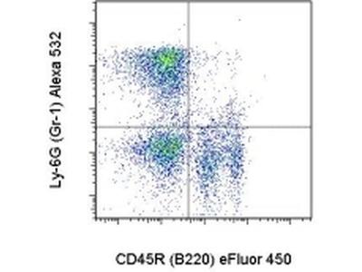 Ly-6G/Ly-6C Monoclonal Antibody (RB6-8C5), Alexa Fluor 532, eBioscience™
