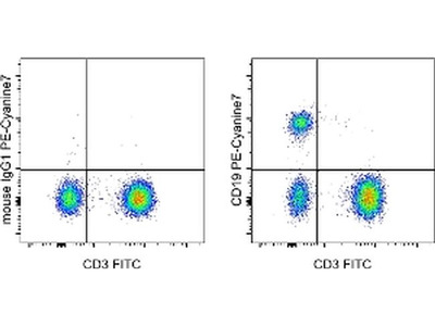 Good Anti-Human CD19 PE-Cy7