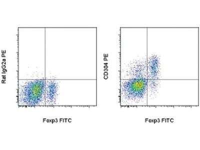 CD304 (Neuropilin-1) Monoclonal Antibody (3DS304M), PE, eBioscience™
