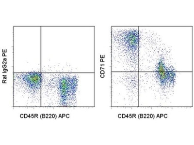 Review Of CD71 PE Staining On RBC And Its Progenitors