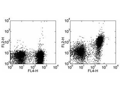 CD150 Monoclonal Antibody (9D1), PE, eBioscience™