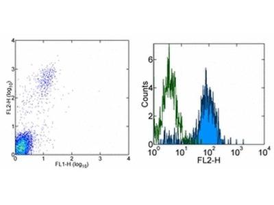 CD328 (Siglec7) Monoclonal Antibody (eBioQA79 (QA79)), PE, eBioscience™