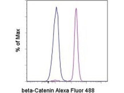beta Catenin Monoclonal Antibody (15B8), Alexa Fluor 488, eBioscience™