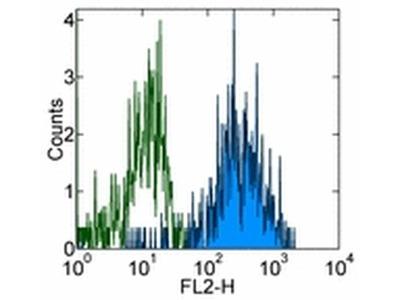 CD115 (c-fms) Monoclonal Antibody (12-3A3-1B10), Biotin, eBioscience™