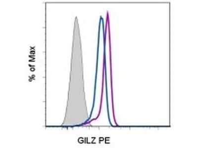 GILZ Monoclonal Antibody (CFMKG15), PE, eBioscience™