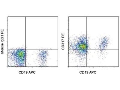 CD317 (BST2, PDCA-1) Monoclonal Antibody (26F8), PE, eBioscience™