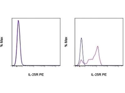 IL-25R (IL-17RB) Monoclonal Antibody (MUNC33), PE, eBioscience™