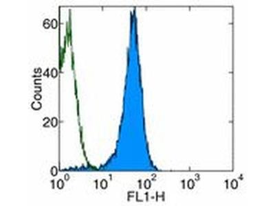 CD2 Monoclonal Antibody (RM2-5), Biotin, eBioscience™