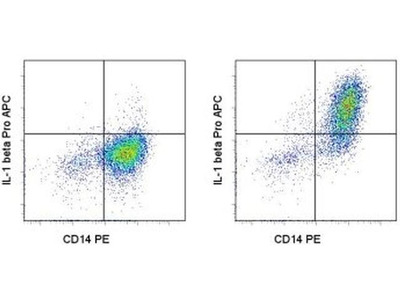 This Thermo Fisher Antibody Is Great for Identifying Pro-IL-1b+ Cells