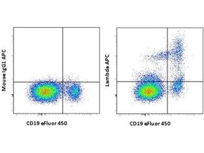 Lambda light chain Monoclonal Antibody (1-155-2), APC, eBioscience™