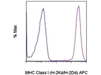 MHC Class I (H-2Kd/H-2Dd) Monoclonal Antibody (34-1-2S), APC, eBioscience™