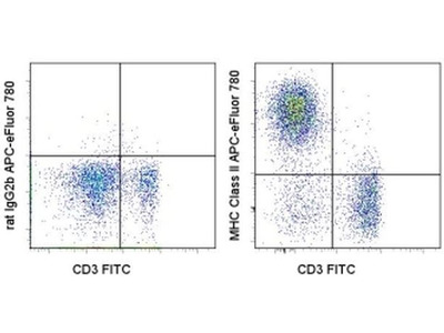 MHC Class II (I-A/I-E) Monoclonal Antibody For Flow Cytometry