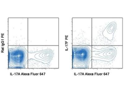 IL-17F Monoclonal Antibody (SHLR17), PE, eBioscience™