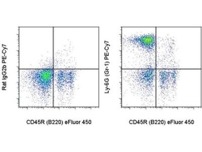 Ly-6G/Ly-6C Monoclonal Antibody (RB6-8C5), PE-Cyanine7, eBioscience™