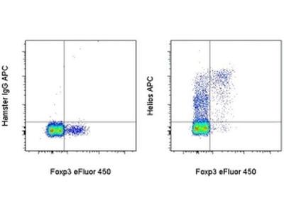 HELIOS Monoclonal Antibody (22F6), APC, eBioscience™