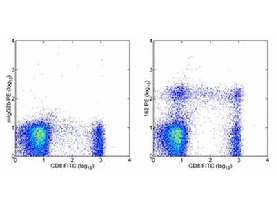 CD319 (CRACC) Monoclonal Antibody (162), PE, eBioscience™
