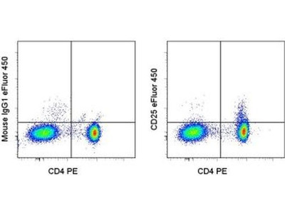 Excellent Antibody For Human CD25 Staining