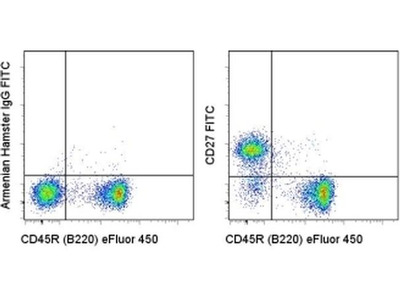 Decent Antibody for CD27 from Thermo Fisher Scientific