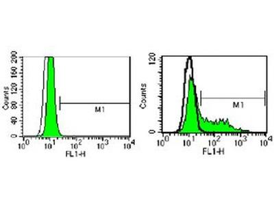 CD289 (TLR9) Monoclonal Antibody (M9.D6), FITC, eBioscience™