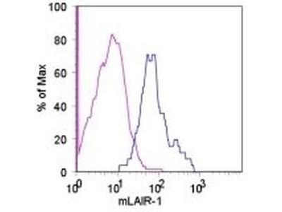 CD305 (LAIR1) Monoclonal Antibody (113), eBioscience™