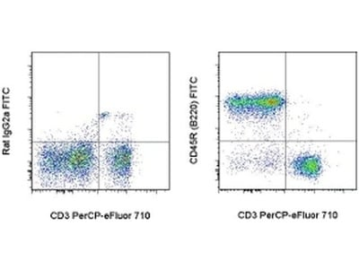 Great Antibody For B Cell Detection