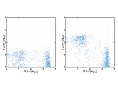 CD3e Monoclonal Antibody (145-2C11), PE-Cyanine7, eBioscience™