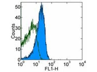 CD28 Monoclonal Antibody (37.51), eBioscience™