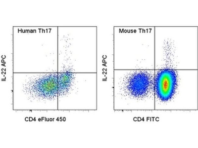 Great Antibody For Staining Intracellular IL-22
