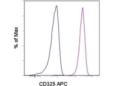 CD325 (N-Cadherin) Monoclonal Antibody (8C11), APC, eBioscience™