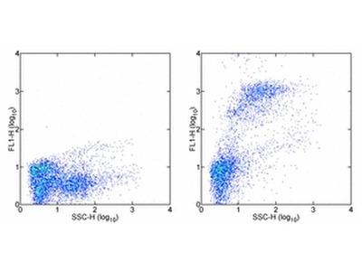 Ly-6G/Ly-6C Monoclonal Antibody (RB6-8C5), Alexa Fluor 488, eBioscience™