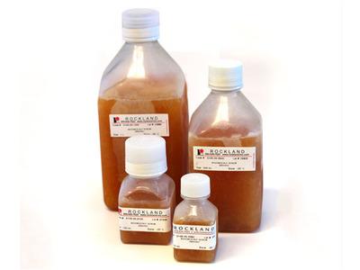 BOVINE CALF SERUM (sterile)