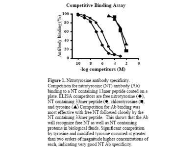 Anti-3-Nitrotyrosine, Purified IgG