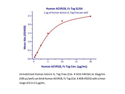 ActiveMax® Recombinant Human Activin A / INHBA