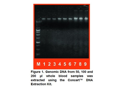 Concert™ DNA Extraction Kit