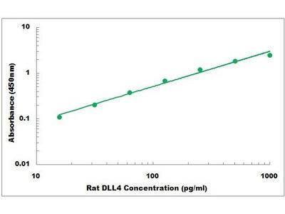 Rat DLL4 ELISA Kit