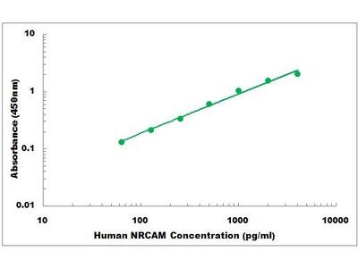 Human NRCAM ELISA Kit