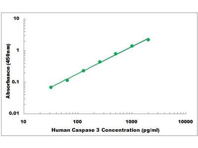 Human Caspase 3 ELISA Kit