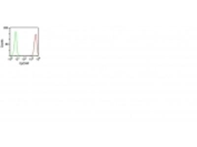 Anti-Ep-CAM / CD326 (Epithelial Marker) Monoclonal Antibody