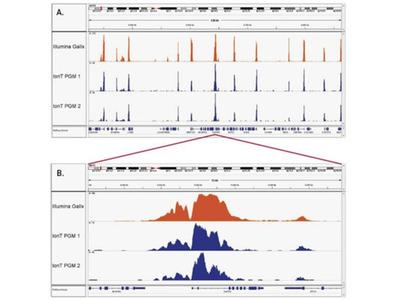 ChIP-seq Kit For Histones (High Sensitivity)