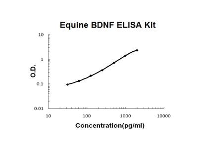 Horse equine BDNF PicoKine ELISA Kit