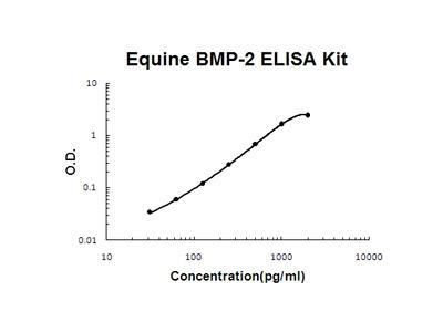 Horse equine BMP-2 PicoKine ELISA Kit